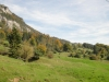 2012_10_oekologisch-wertvoller-waldrand
