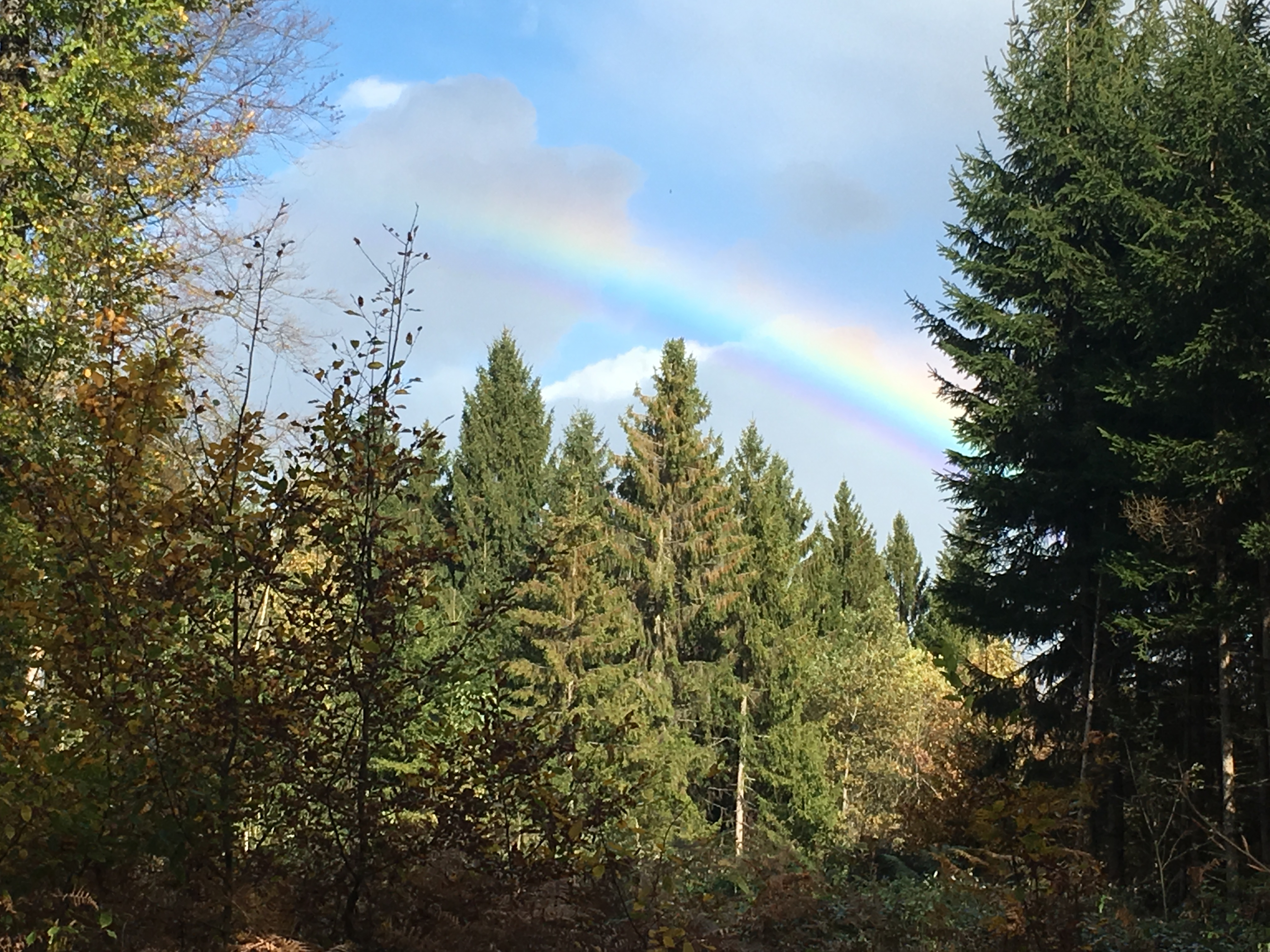 2017-10-22-Regenbogen c