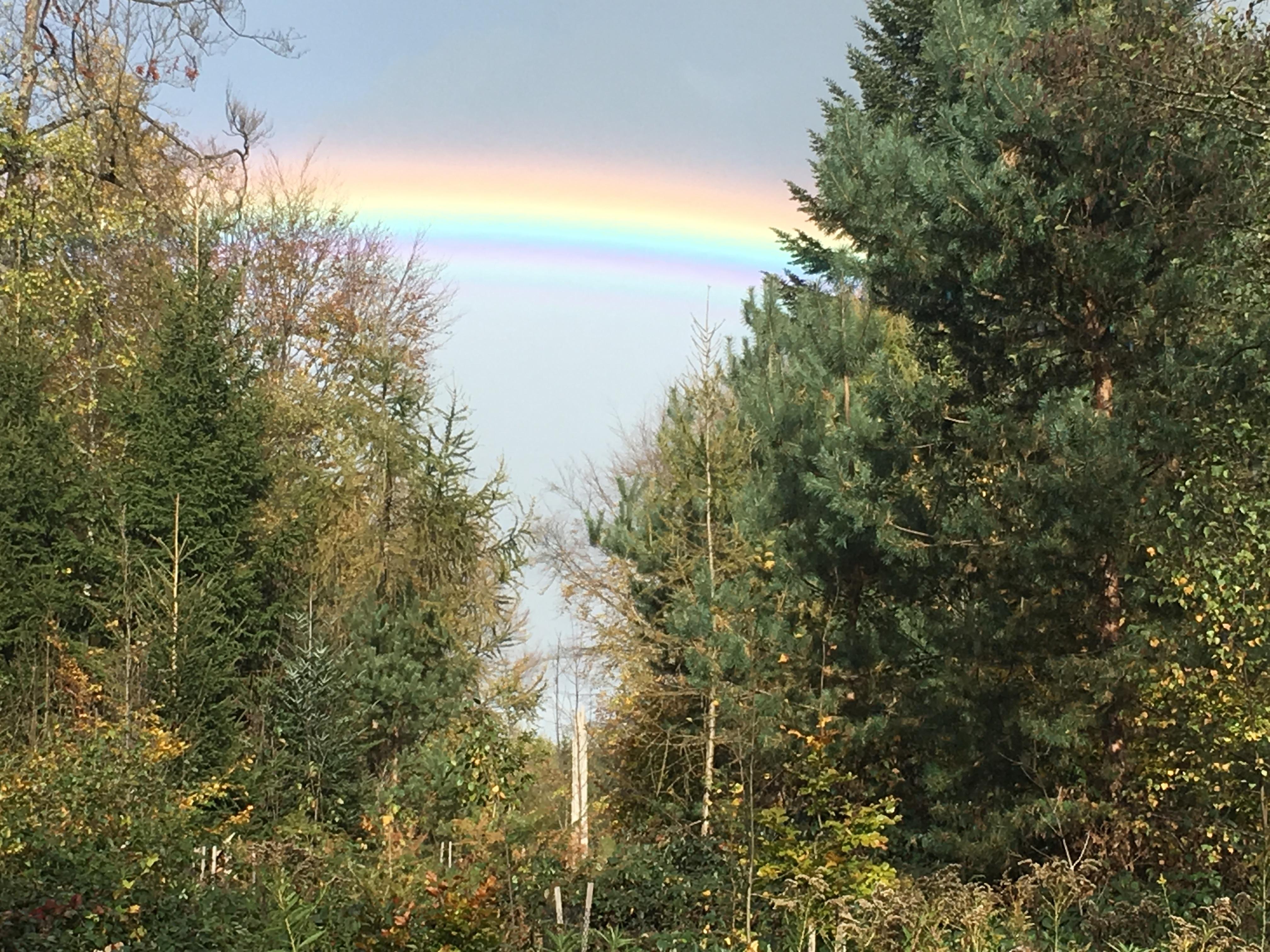 2017-10-22-Regenbogen
