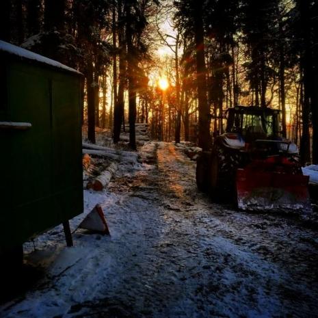 2015-01-01-unterendinger-landwirte-im-holz