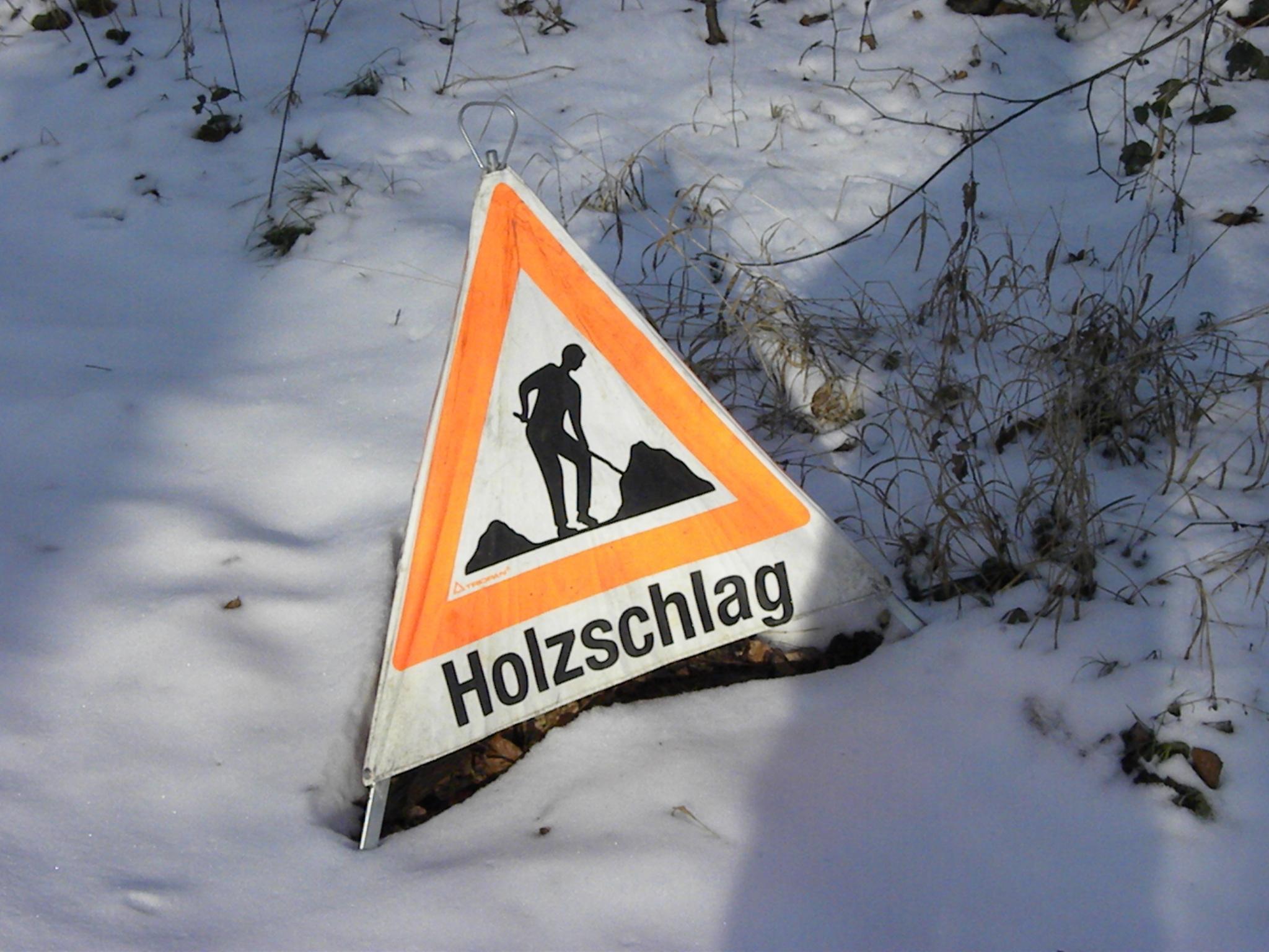 _2010_01_21 Triopan Holzschlag