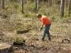 2011_04_01_1529-pflanzung-laerchen