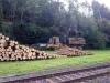2011_09_08-sturmholz-ruesten-2