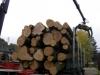 2011_10_13_887-rundholzverlad