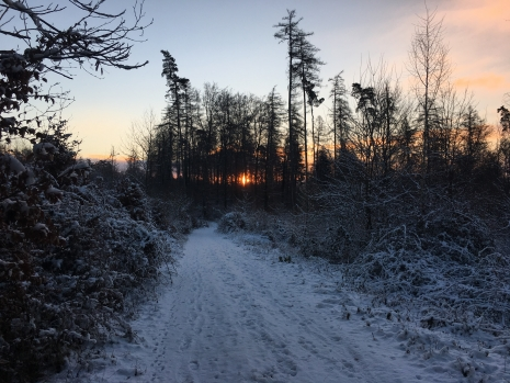 2017-01-06 Sonnenaufgang