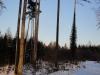 2012_02_05_1342-winterwald