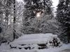 2012_12_12_rundholzpolter-im-schnee-2