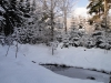 2012_12_12_winterwald-06